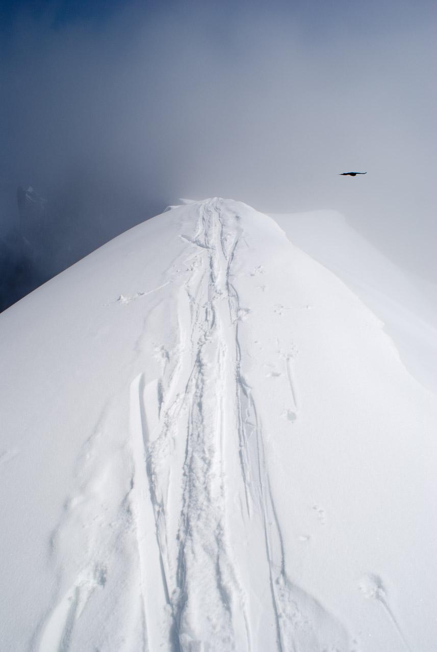Alpine skiing tracks in Chamonix
